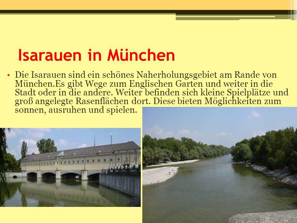 Isarauen in München Die Isarauen sind ein schönes Naherholungsgebiet am Rande von München.Es gibt Wege zum Englischen Garten und weiter in die Stadt o