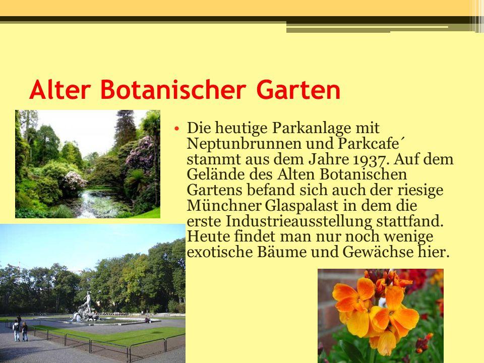 Alter Botanischer Garten Die heutige Parkanlage mit Neptunbrunnen und Parkcafe´ stammt aus dem Jahre 1937. Auf dem Gelände des Alten Botanischen Garte