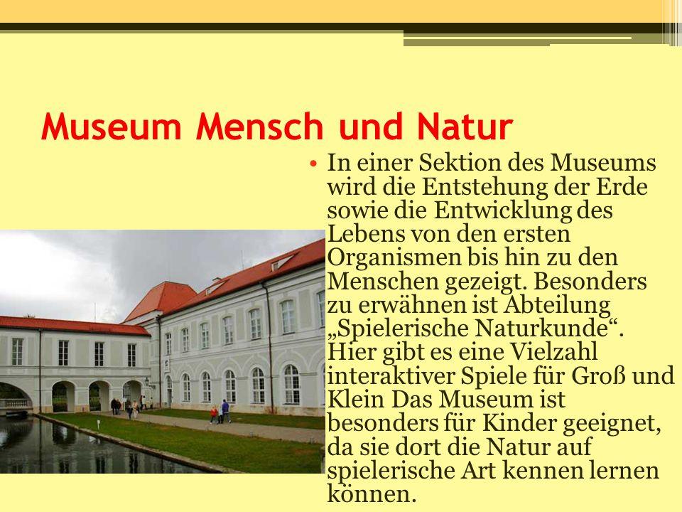 Museum Mensch und Natur In einer Sektion des Museums wird die Entstehung der Erde sowie die Entwicklung des Lebens von den ersten Organismen bis hin z