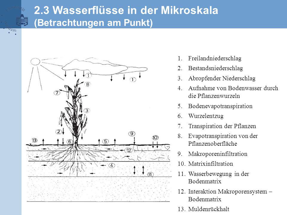 2.3 Wasserflüsse in der Mikroskala (Betrachtungen am Punkt) 1.Freilandniederschlag 2.Bestandsniederschlag 3.Abropfender Niederschlag 4.Aufnahme von Bodenwasser durch die Pflanzenwurzeln 5.Bodenevapotranspiration 6.Wurzelentzug 7.Transpiration der Pflanzen 8.Evapotranspiration von der Pflanzenoberfläche 9.Makroporeninfiltration 10.Matrixinfiltration 11.Wasserbewegung in der Bodenmatrix 12.Interaktion Makroporensystem – Bodenmatrix 13.Muldenrückhalt