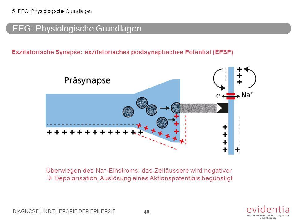 Exzitatorische Synapse: exzitatorisches postsynaptisches Potential (EPSP) Überwiegen des Na + -Einstroms, das Zelläussere wird negativer  Depolarisat