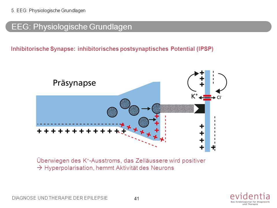 Inhibitorische Synapse: inhibitorisches postsynaptisches Potential (IPSP) Überwiegen des K + -Ausstroms, das Zelläussere wird positiver  Hyperpolaris