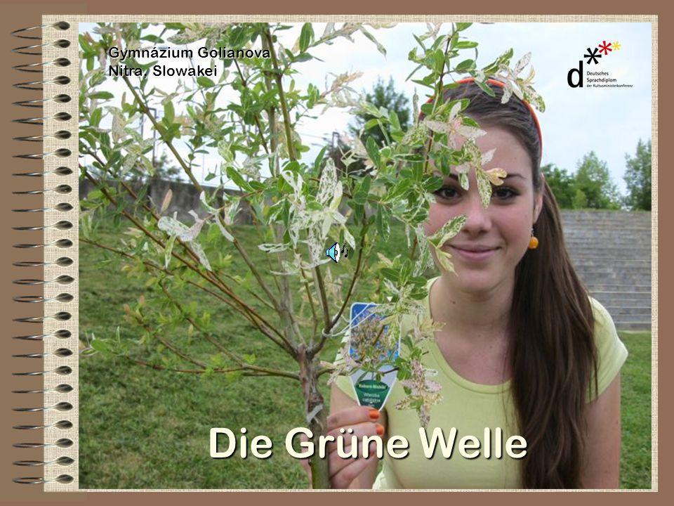 Die Grüne Welle WER.wir und andere Jugendliche aus der ganzen Welt WO.