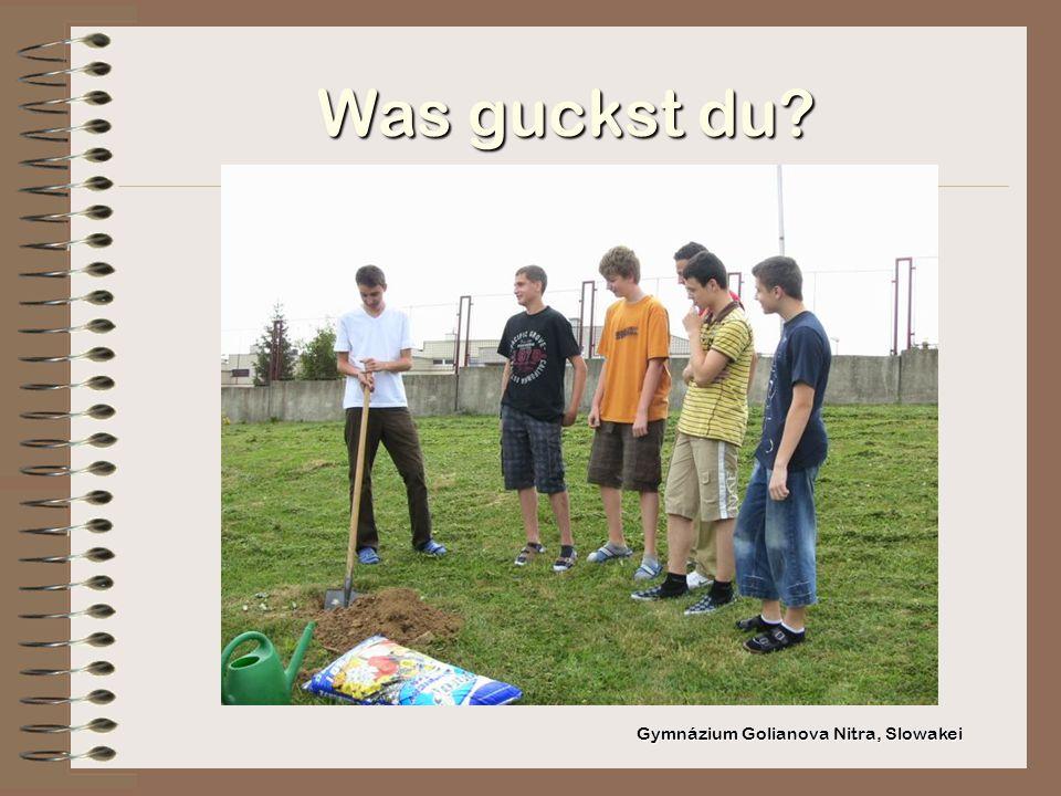 Was guckst du Gymnázium Golianova Nitra, Slowakei