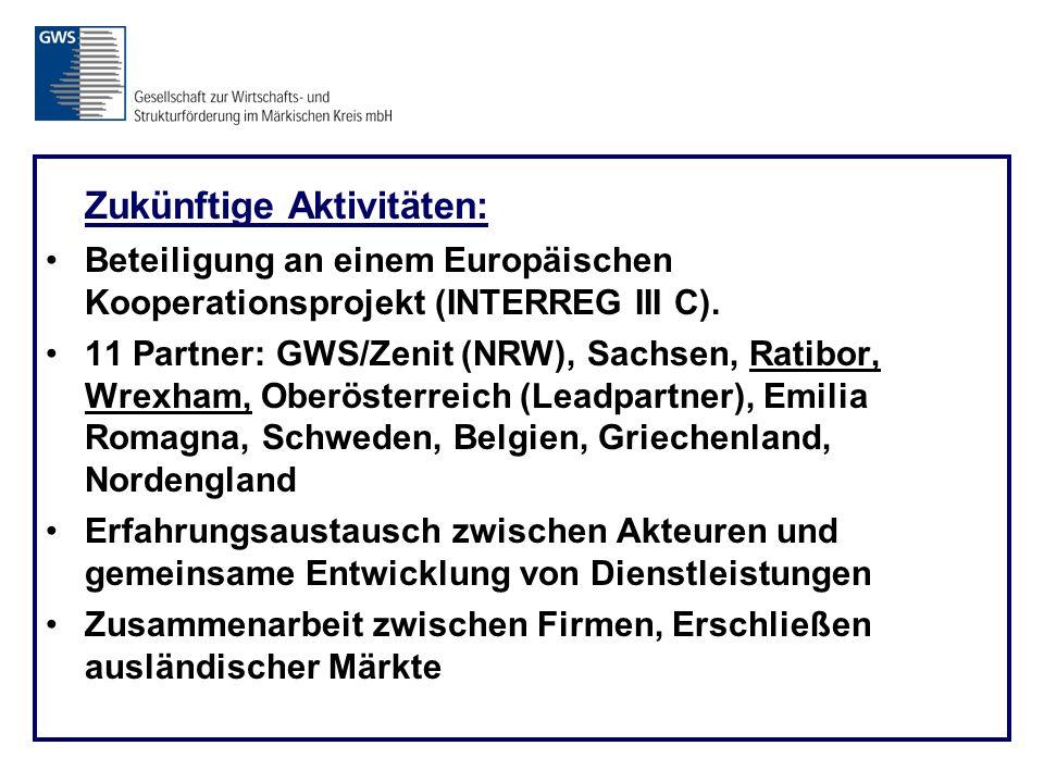Zukünftige Aktivitäten: Beteiligung an einem Europäischen Kooperationsprojekt (INTERREG III C).