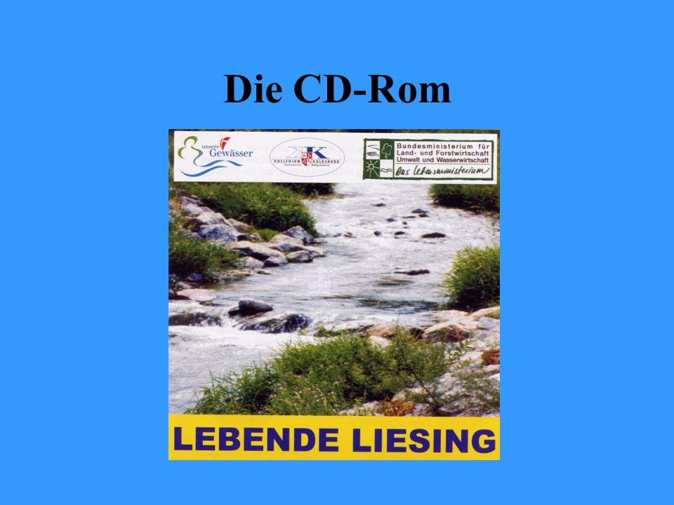 Die CD-Rom