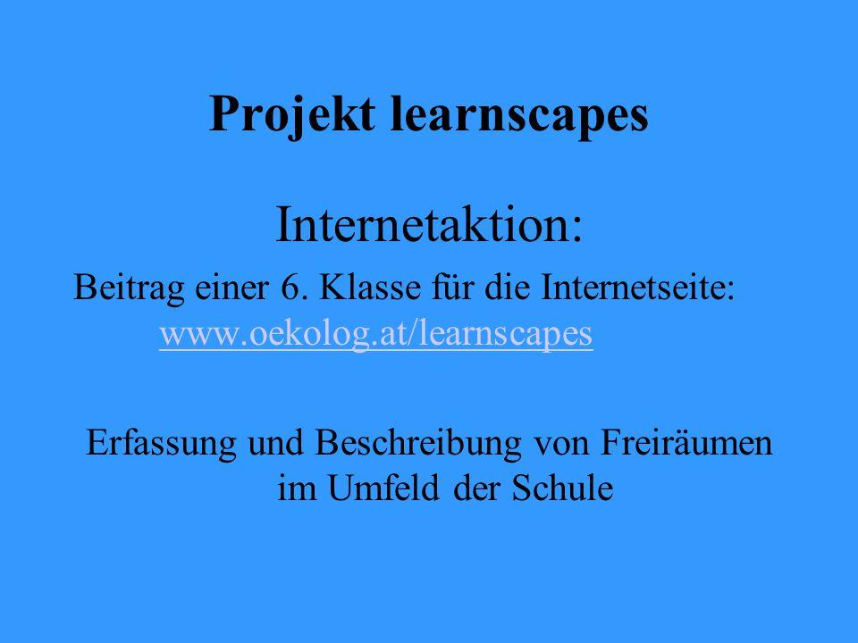 Projekt learnscapes Internetaktion: Beitrag einer 6.