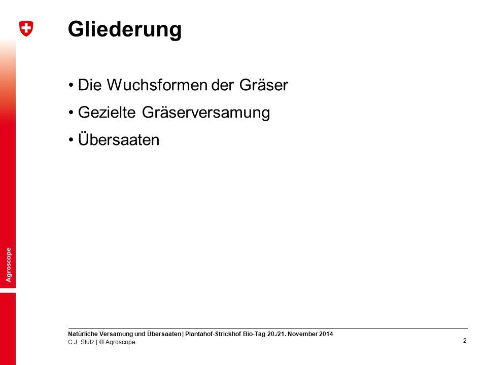 3 Die zwei Wuchsformen der Gräser Ausläufertreibende Gräser (Rasengräser) Horstbildende Gräser (Horst- oder Büschelgräser) C.J.