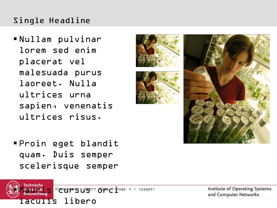 Presenter | Short Tile | Page 4 / (pages) Single Headline  Nullam pulvinar lorem sed enim placerat vel malesuada purus laoreet. Nulla ultrices urna s