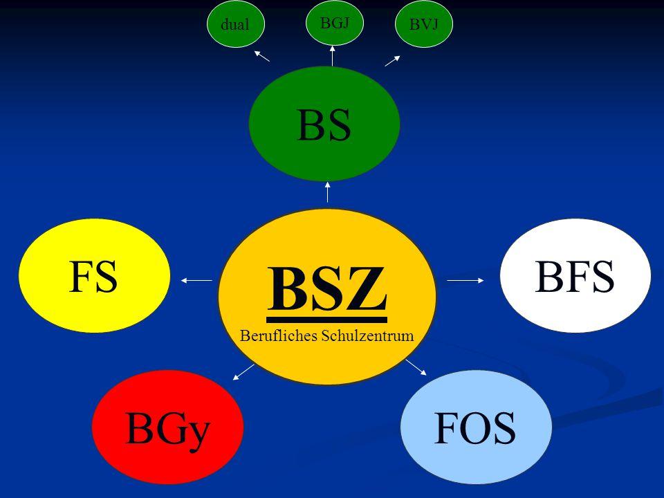 BSZ Berufliches Schulzentrum BS FSBFS BGyFOS dual BGJ BVJ