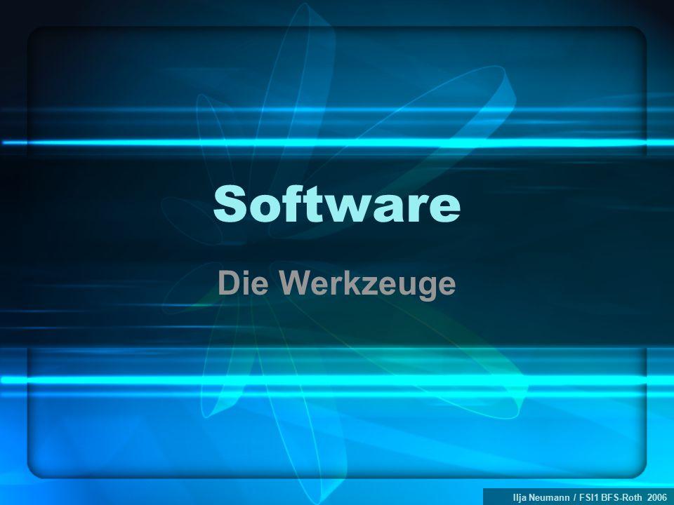 Ilja Neumann / FSI1 BFS-Roth 2006 Software Die Werkzeuge