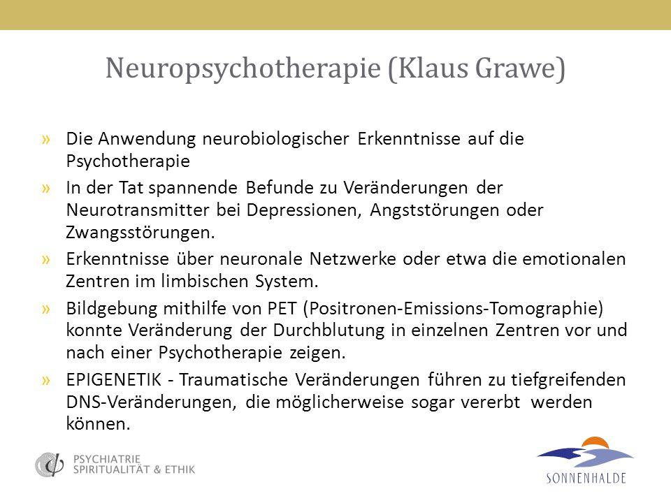 Neuropsychotherapie (Klaus Grawe) »Die Anwendung neurobiologischer Erkenntnisse auf die Psychotherapie »In der Tat spannende Befunde zu Veränderungen