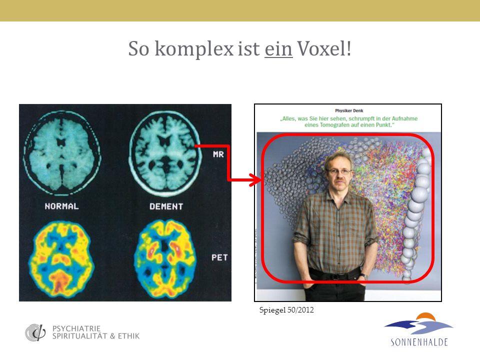 So komplex ist ein Voxel! Spiegel 50/2012