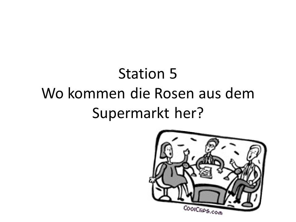 Station 5 Wo kommen die Rosen aus dem Supermarkt her?