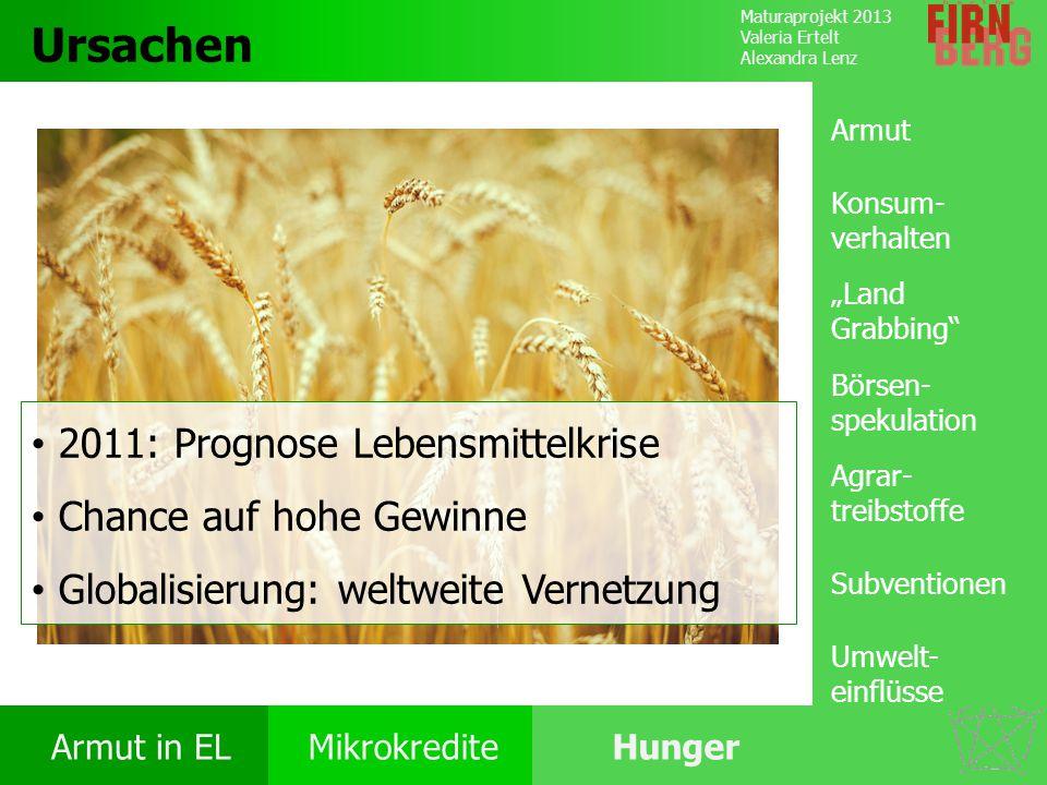 Maturaprojekt 2013 Valeria Ertelt Alexandra Lenz Armut in ELMikrokrediteHunger Ursachen Folgen Ernährung Bekämpfung Forschungs- frage Ursachen 2011: P