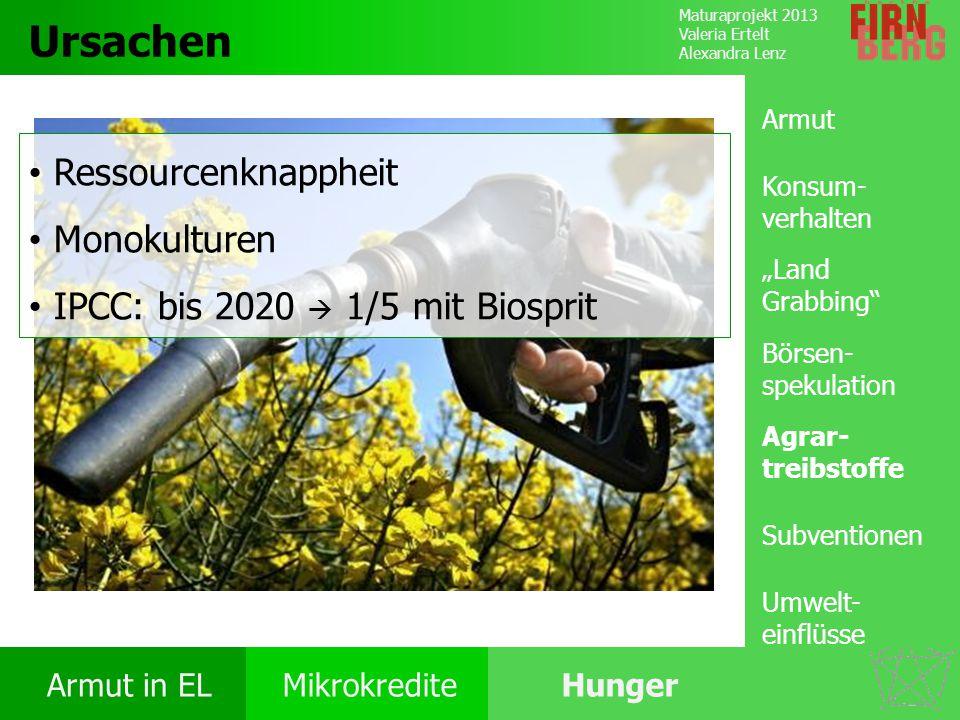 Maturaprojekt 2013 Valeria Ertelt Alexandra Lenz Armut in ELMikrokrediteHunger Ursachen Folgen Ernährung Bekämpfung Forschungs- frage Ursachen Ressour