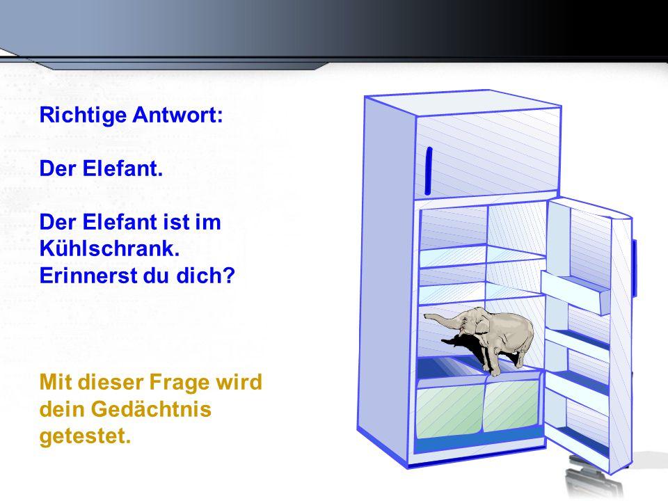 Richtige Antwort: Der Elefant.Der Elefant ist im Kühlschrank.