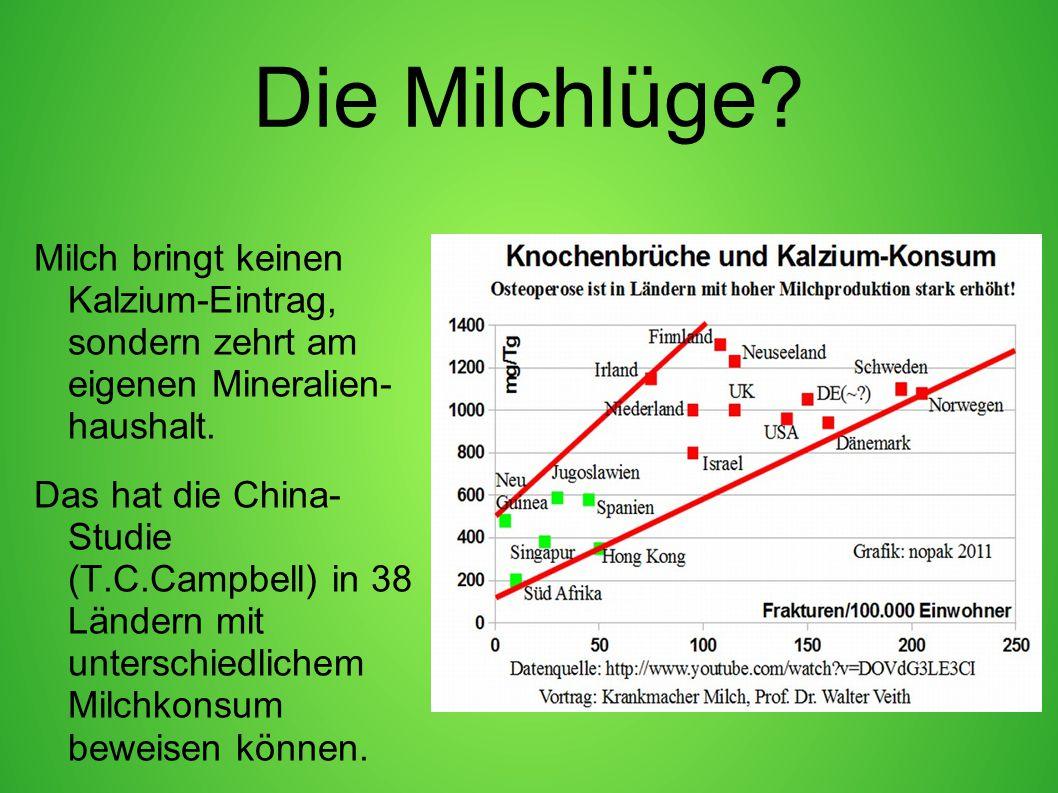 Die Milchlüge? Milch bringt keinen Kalzium-Eintrag, sondern zehrt am eigenen Mineralien- haushalt. Das hat die China- Studie (T.C.Campbell) in 38 Länd