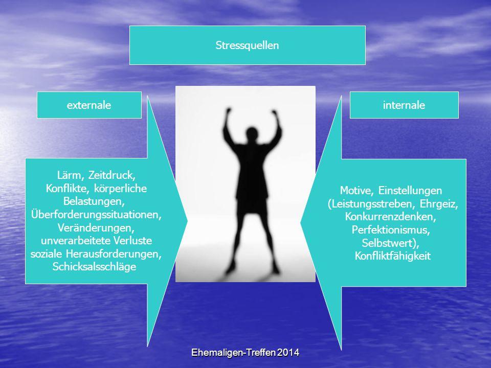 Ehemaligen-Treffen 2014 Stressquellen externaleinternale Lärm, Zeitdruck, Konflikte, körperliche Belastungen, Überforderungssituationen, Veränderungen