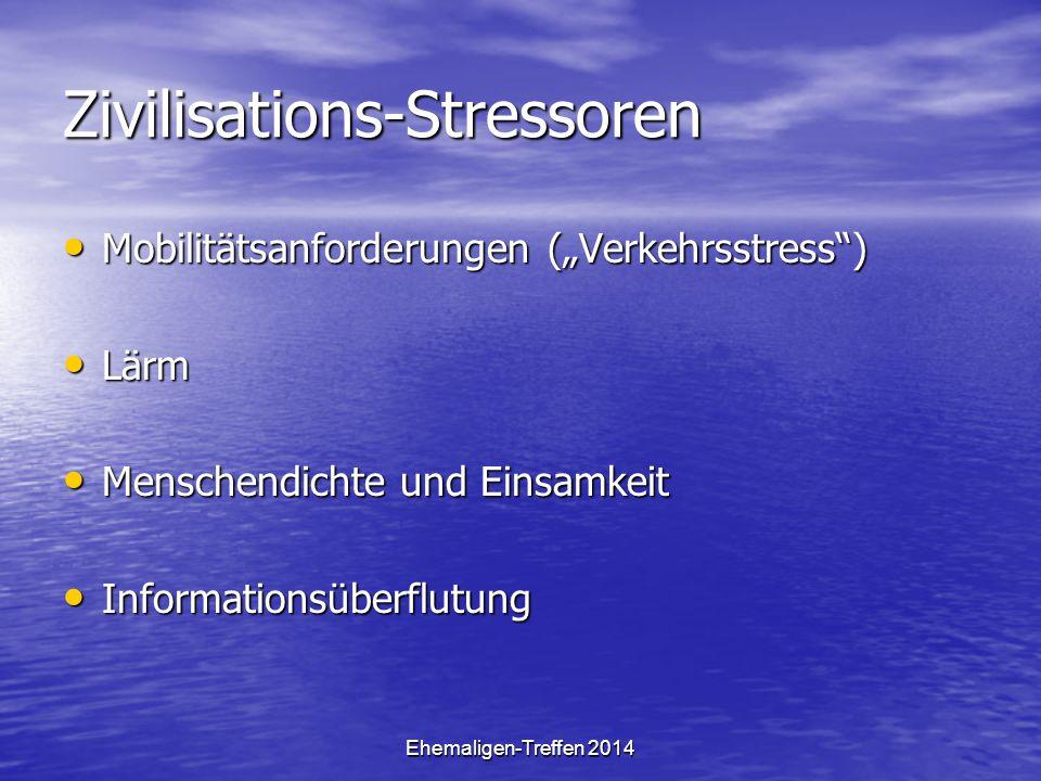 """Ehemaligen-Treffen 2014 Zivilisations-Stressoren Mobilitätsanforderungen (""""Verkehrsstress"""") Mobilitätsanforderungen (""""Verkehrsstress"""") Lärm Lärm Mensc"""