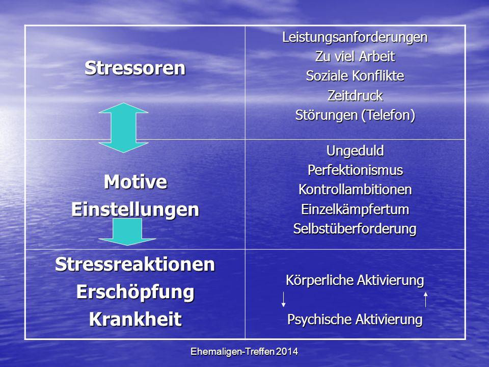 Ehemaligen-Treffen 2014 StressorenLeistungsanforderungen Zu viel Arbeit Soziale Konflikte Zeitdruck Störungen (Telefon) MotiveEinstellungenUngeduldPer