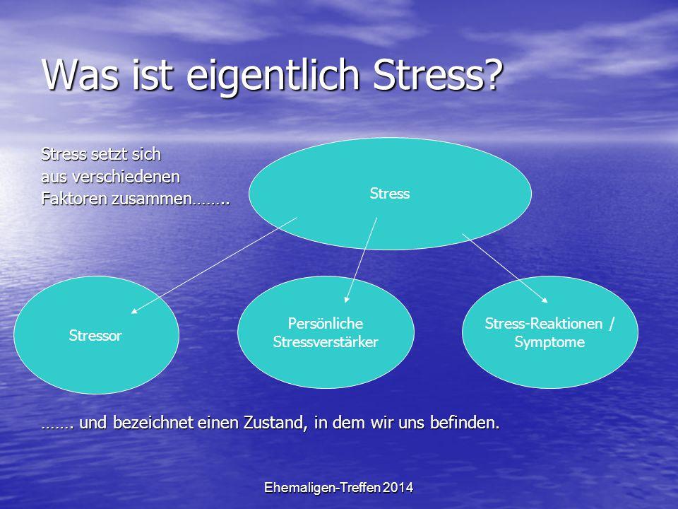 Ehemaligen-Treffen 2014 Stressmanagement Stressoren Stressoren Persönliche Stressverstärker Persönliche Stressverstärker Stressreaktion Stressreaktion Instrumentelle Stresskompetenz Instrumentelle Stresskompetenz Mentale Stresskompetenz Mentale Stresskompetenz Regenerative Stresskompetenz Regenerative Stresskompetenz