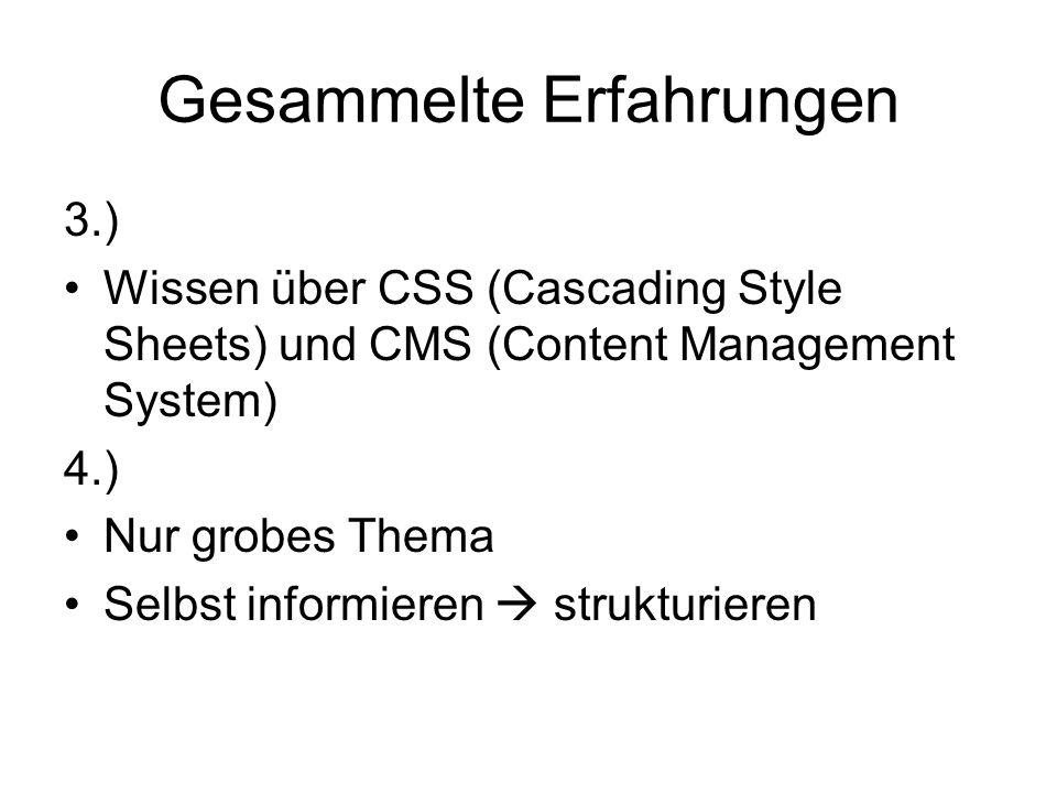 Gesammelte Erfahrungen 3.) Wissen über CSS (Cascading Style Sheets) und CMS (Content Management System) 4.) Nur grobes Thema Selbst informieren  stru