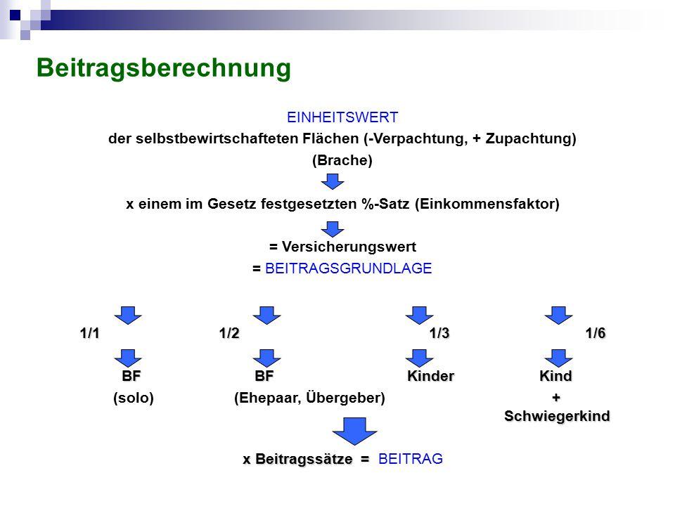 Beitragsberechnung EINHEITSWERT der selbstbewirtschafteten Flächen (-Verpachtung, + Zupachtung) (Brache) x einem im Gesetz festgesetzten %-Satz (Einko