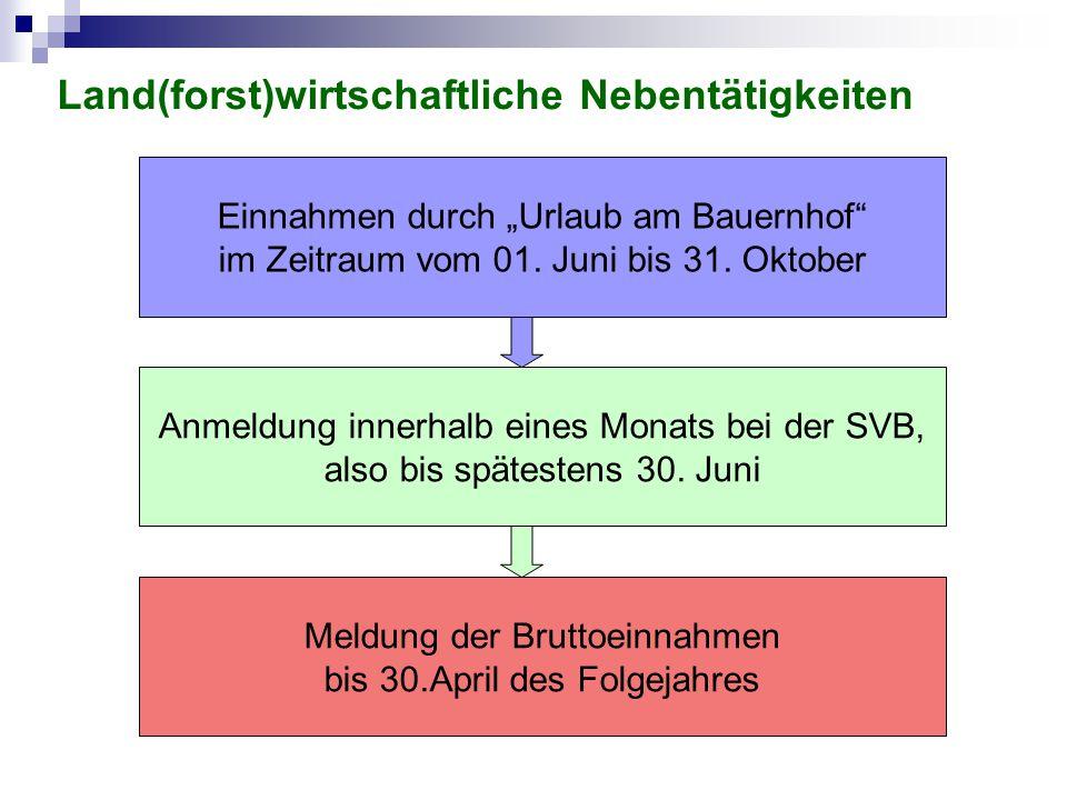 """Anmeldung innerhalb eines Monats bei der SVB, also bis spätestens 30. Juni Meldung der Bruttoeinnahmen bis 30.April des Folgejahres Einnahmen durch """"U"""