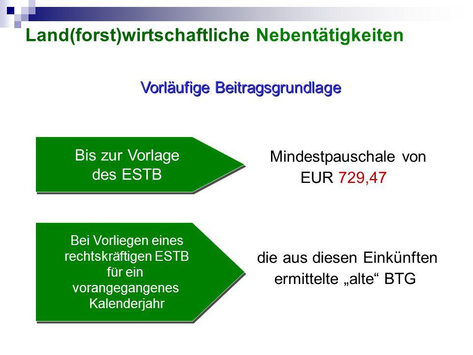 """Vorläufige Beitragsgrundlage die aus diesen Einkünften ermittelte """"alte"""" BTG Bei Vorliegen eines rechtskräftigen ESTB für ein vorangegangenes Kalender"""