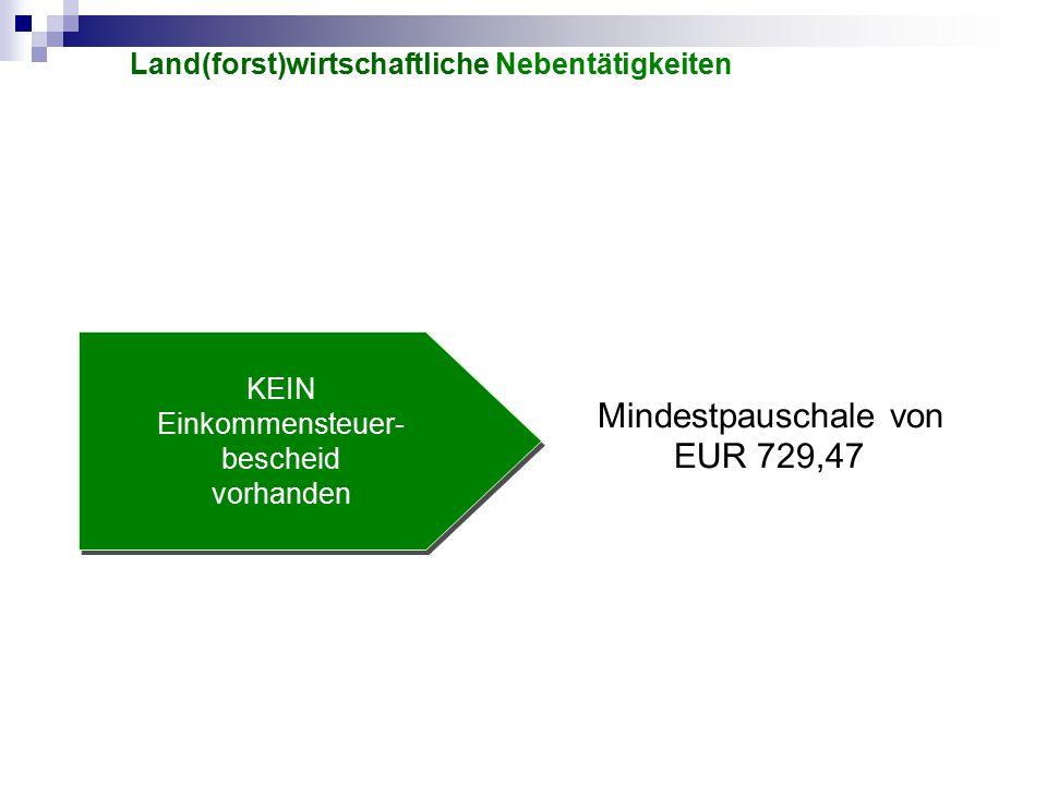 KEIN Einkommensteuer- bescheid vorhanden Mindestpauschale von EUR 729,47 Land(forst)wirtschaftliche Nebentätigkeiten