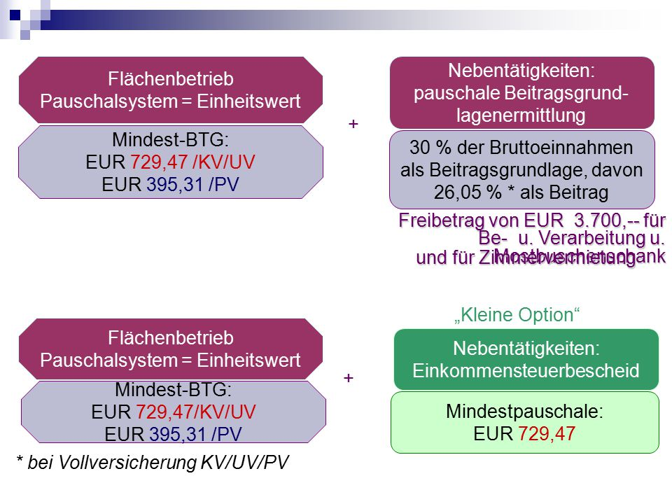 Flächenbetrieb Pauschalsystem = Einheitswert Mindest-BTG: EUR 729,47 /KV/UV EUR 395,31 /PV Freibetrag von EUR 3.700,-- für Be- u. Verarbeitung u. Most