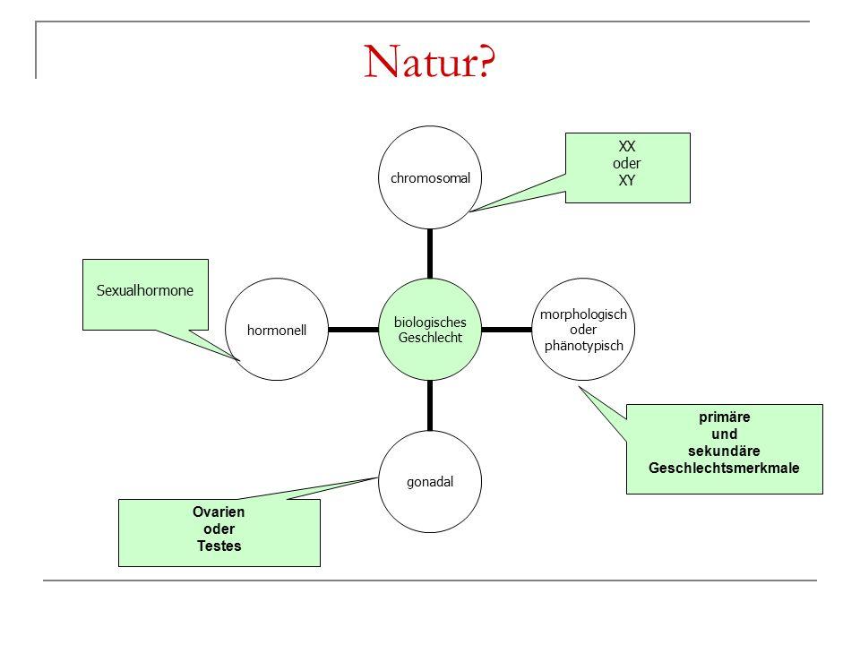 Natur? Sexualhormone XX oder XY primäre und sekundäre Geschlechtsmerkmale Ovarien oder Testes