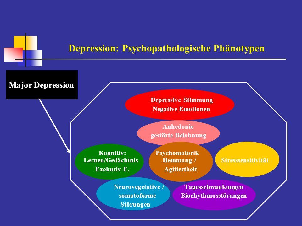 Major Depression Depression: Psychopathologische Phänotypen Depressive Stimmung Negative Emotionen Anhedonie gestörte Belohnung Kognitiv: Psychomotori
