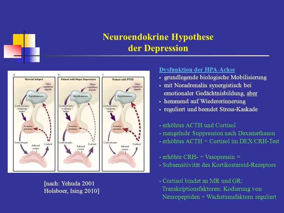 Neuroendokrine Hypothese der Depression [nach: Yehuda 2001 Holsboer, Ising 2010] Dysfunktion der HPA-Achse  grundlegende biologische Mobilisierung 