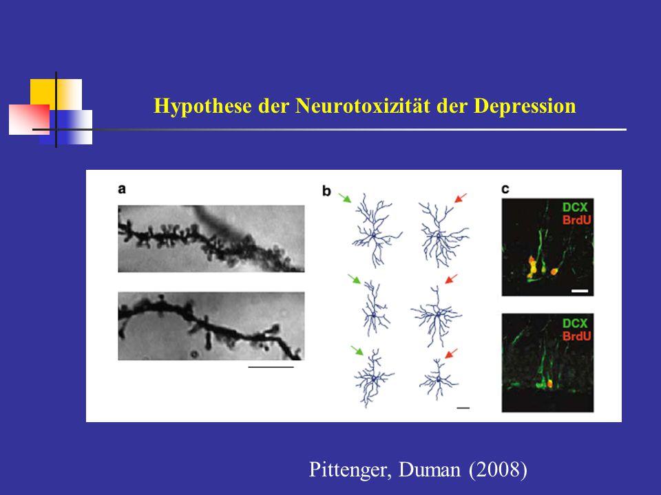 Hypothese der Neurotoxizität der Depression Pittenger, Duman (2008)