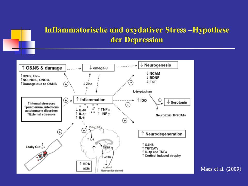 Inflammatorische und oxydativer Stress –Hypothese der Depression Maes et al. (2009)