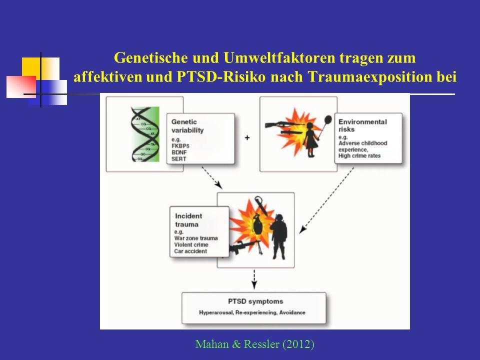 Genetische und Umweltfaktoren tragen zum affektiven und PTSD-Risiko nach Traumaexposition bei Mahan & Ressler (2012)