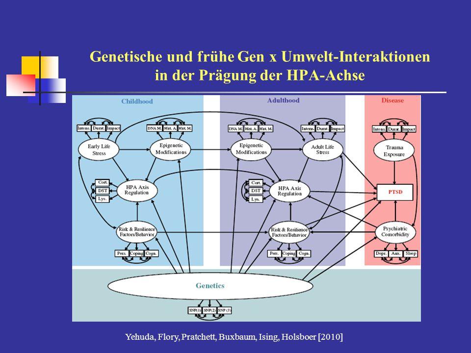 Genetische und frühe Gen x Umwelt-Interaktionen in der Prägung der HPA-Achse Yehuda, Flory, Pratchett, Buxbaum, Ising, Holsboer [2010]