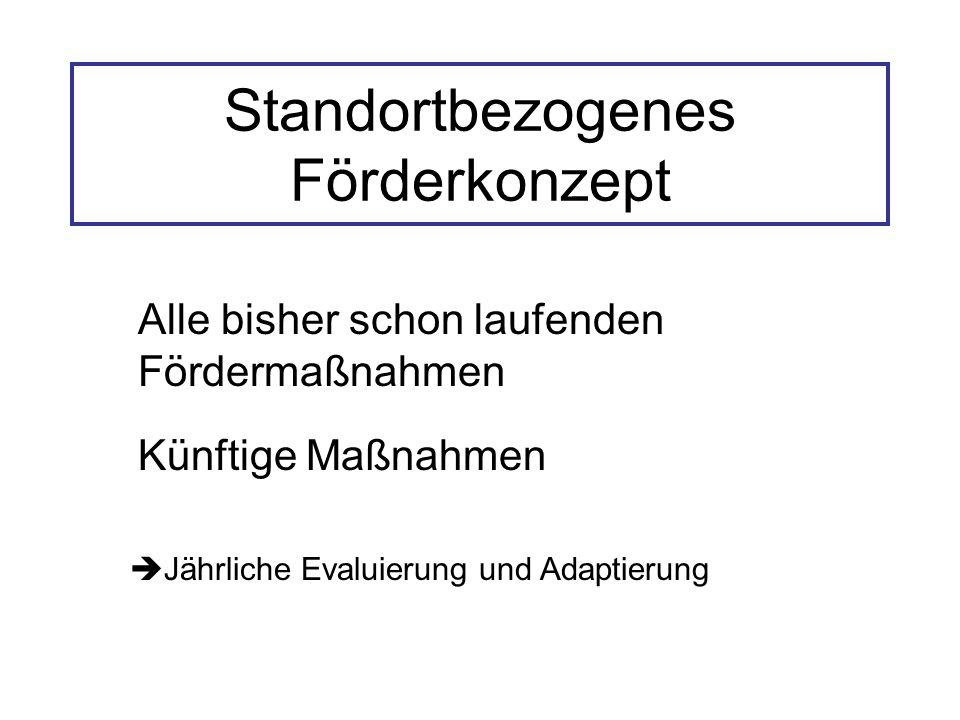Standortbezogenes Förderkonzept Alle bisher schon laufenden Fördermaßnahmen Künftige Maßnahmen  Jährliche Evaluierung und Adaptierung