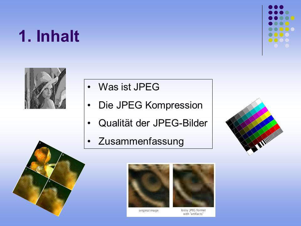 2.Was ist JPEG. Ein Bild mit von links nach rechts abnehmenden Qualitätsstufen.