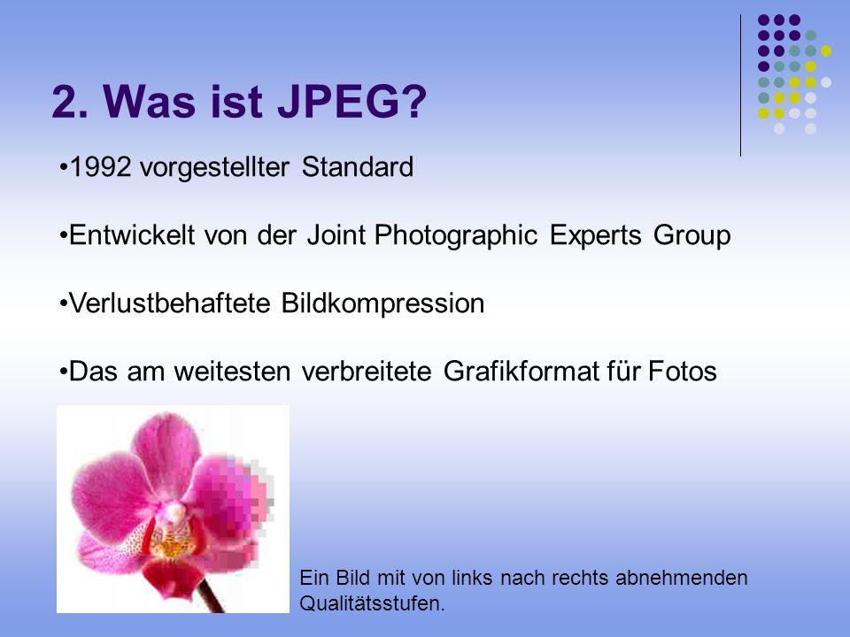 2. Was ist JPEG? Ein Bild mit von links nach rechts abnehmenden Qualitätsstufen. 1992 vorgestellter Standard Entwickelt von der Joint Photographic Exp