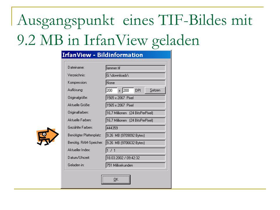 Ausgangspunkt eines TIF-Bildes mit 9.2 MB in IrfanView geladen