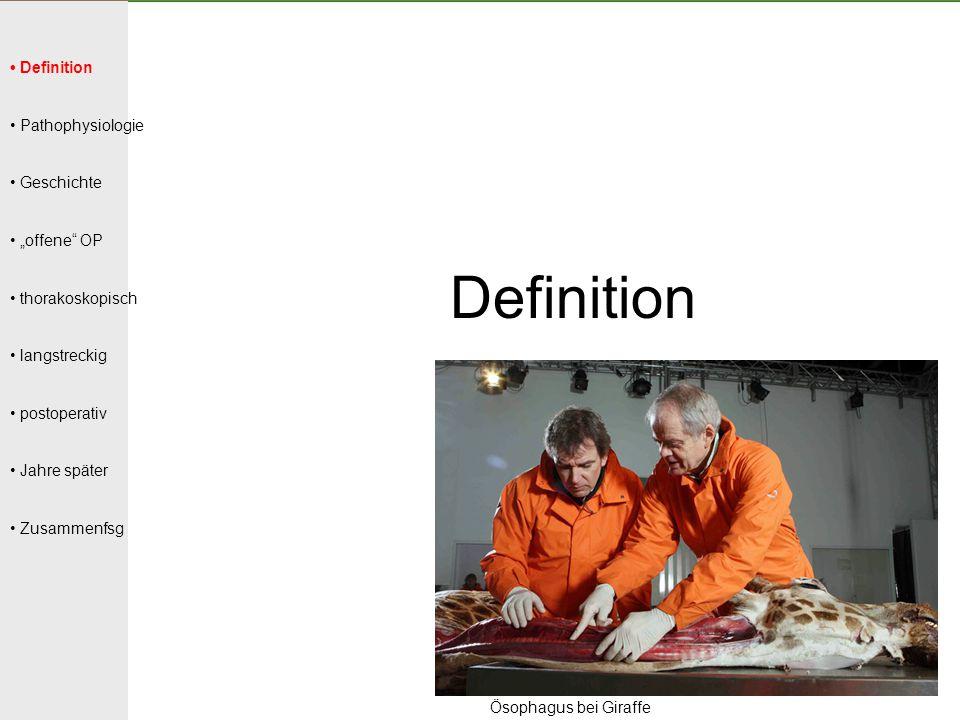 """Definition Pathophysiologie Geschichte """"offene"""" OP thorakoskopisch langstreckig postoperativ Jahre später Zusammenfsg Definition Ösophagus bei Giraffe"""