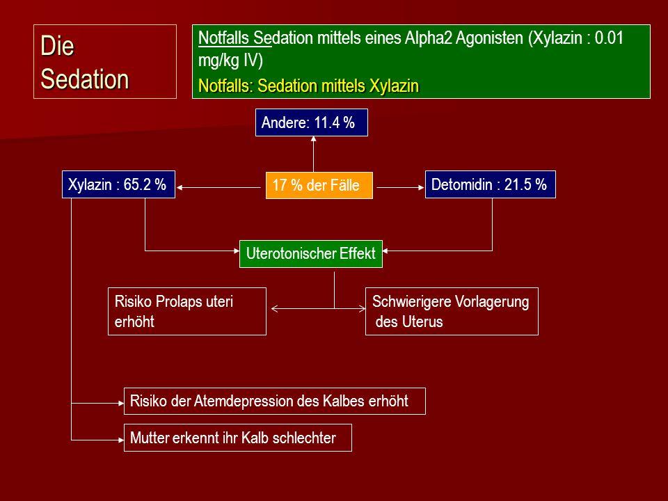 Die Sedation 17 % der Fälle Xylazin : 65.2 %Detomidin : 21.5 % Andere: 11.4 % Uterotonischer Effekt Schwierigere Vorlagerung des Uterus Mutter erkennt