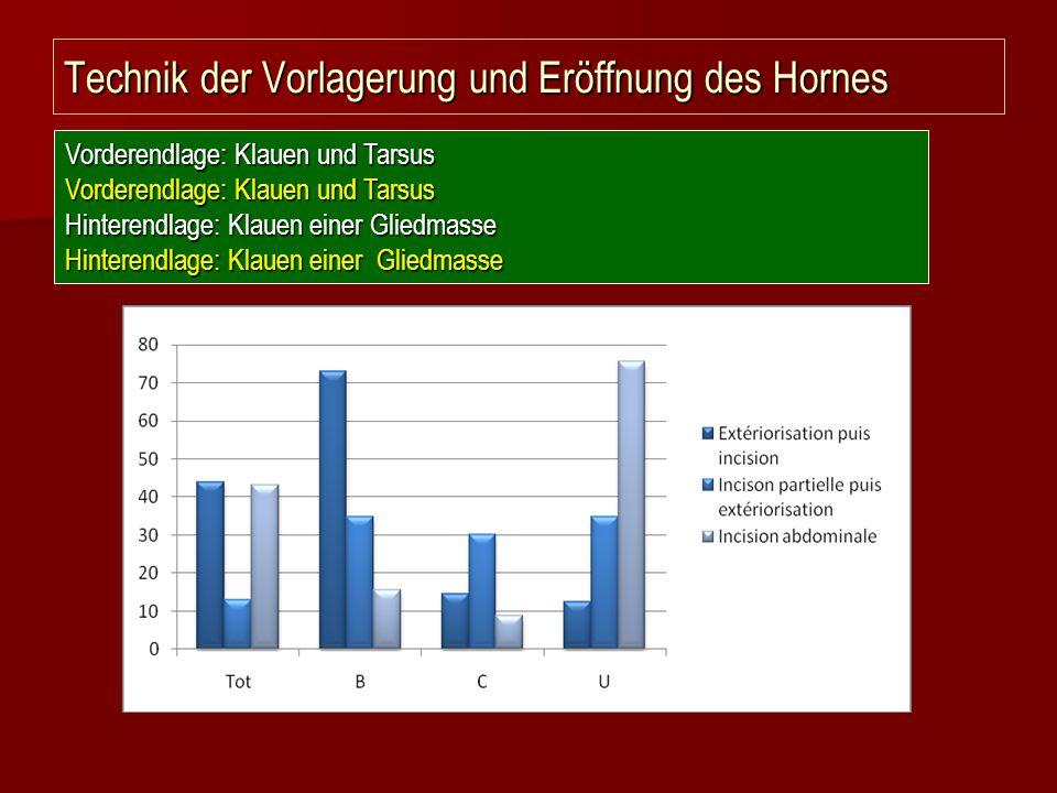 Technik der Vorlagerung und Eröffnung des Hornes Vorderendlage: Klauen und Tarsus Hinterendlage: Klauen einer Gliedmasse