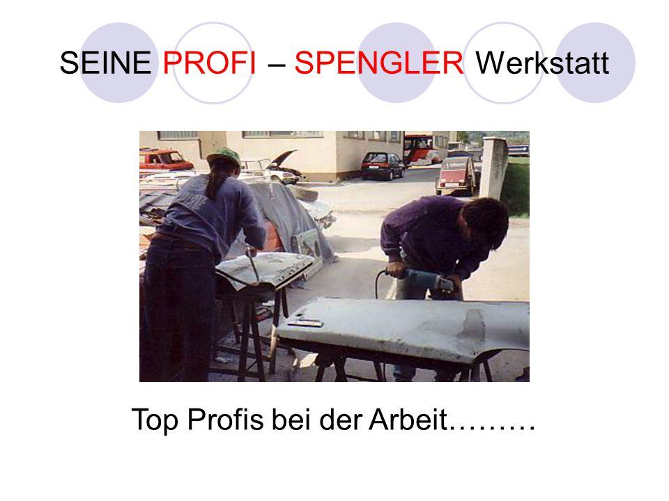 SEINE PROFI – SPENGLER Werkstatt Top Profis bei der Arbeit………