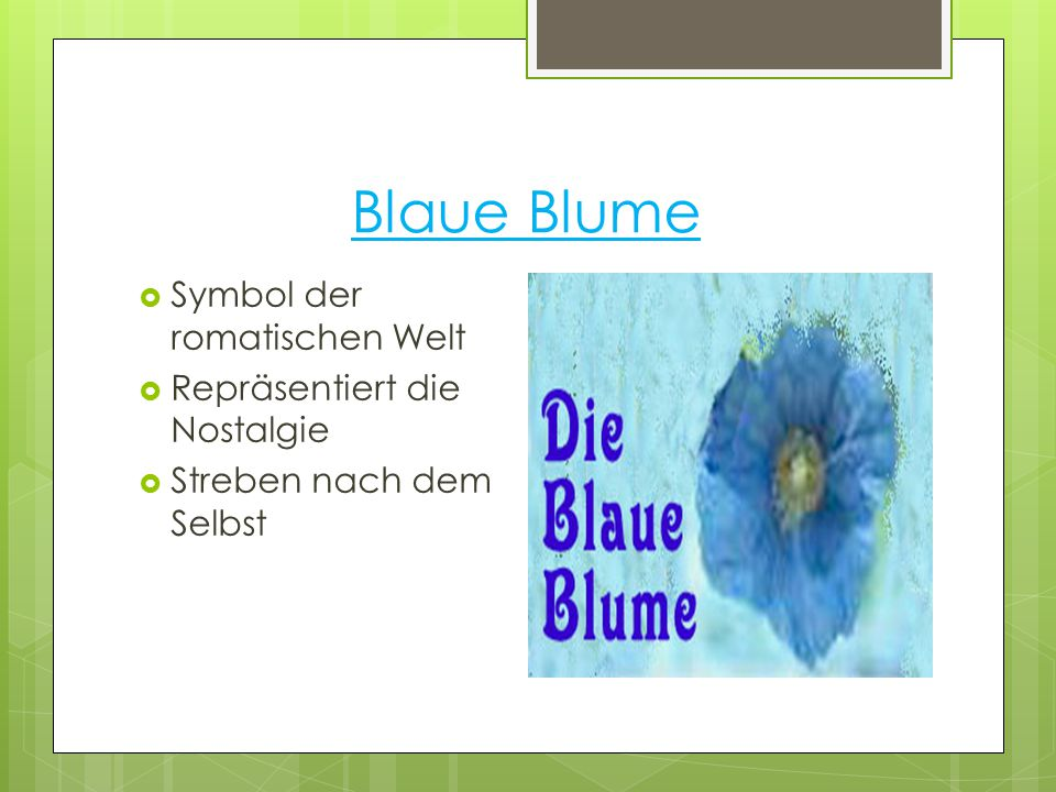 Blaue Blume  Symbol der romatischen Welt  Repräsentiert die Nostalgie  Streben nach dem Selbst
