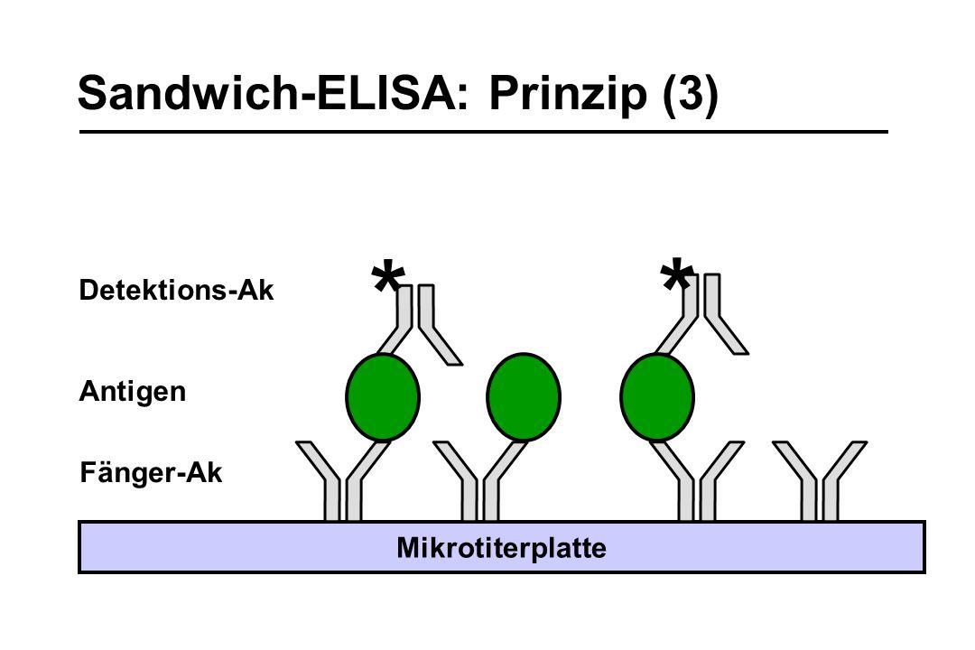 Sandwich-ELISA: Prinzip (3) Fänger-Ak Mikrotiterplatte * * Detektions-Ak Antigen