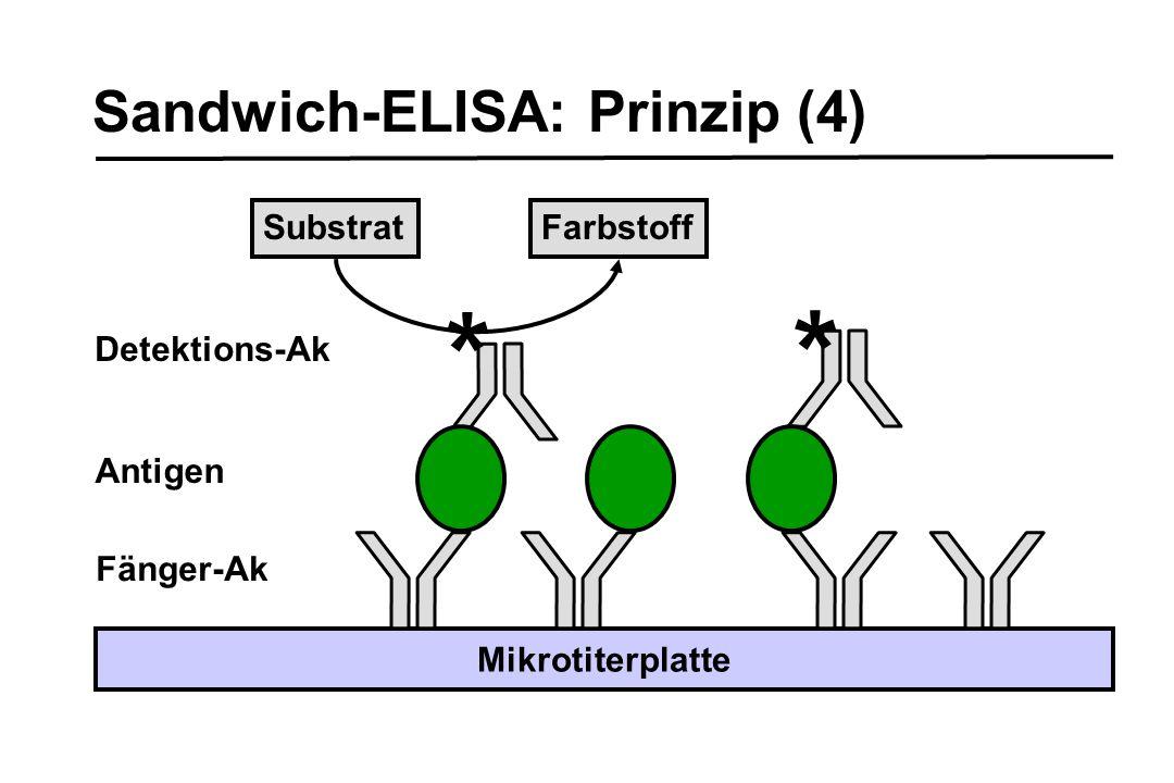 Sandwich-ELISA: Prinzip (4) Fänger-Ak Mikrotiterplatte * * Detektions-Ak Antigen SubstratFarbstoff